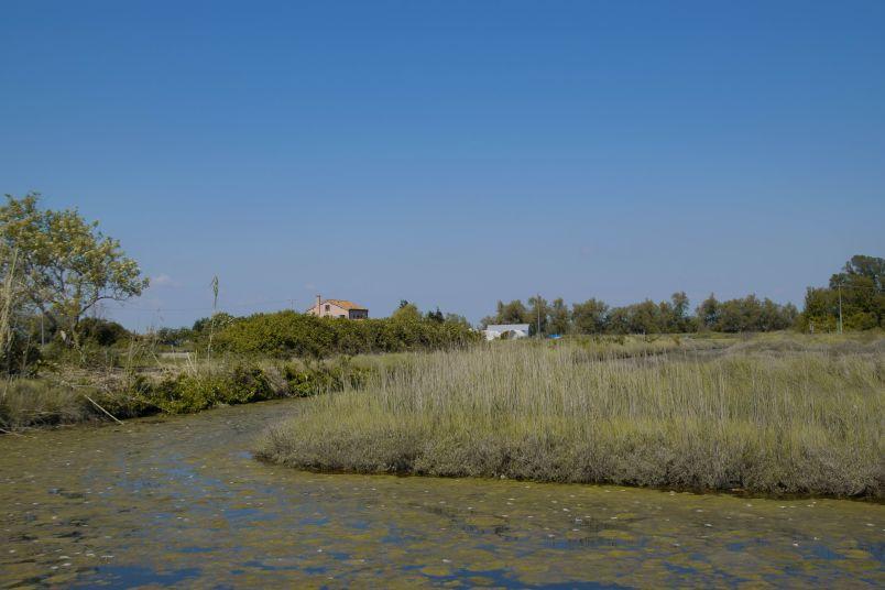 veduta sull'isola delle vignole