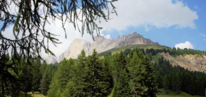 le meravigliose perle delle alpi rappresentate in questa foto delle alpi con bosco in basso e fronde di albero come cornice