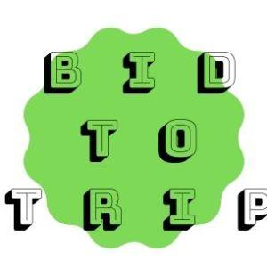 Titolo articolo Bidtotrip aste online viaggi