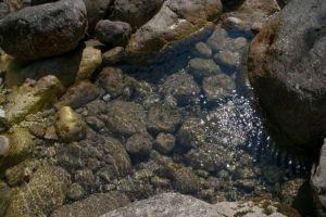 la trasparenza dell'acqua