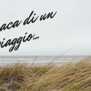 titolo articolo cronaca di un viaggio con sfondo mare e fili d'erba secchi