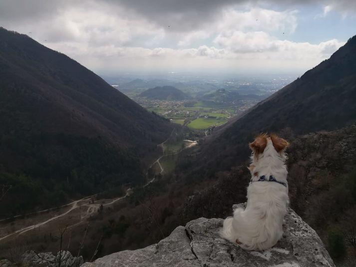 Veduta dalla Valle Santa Felicita su Romano