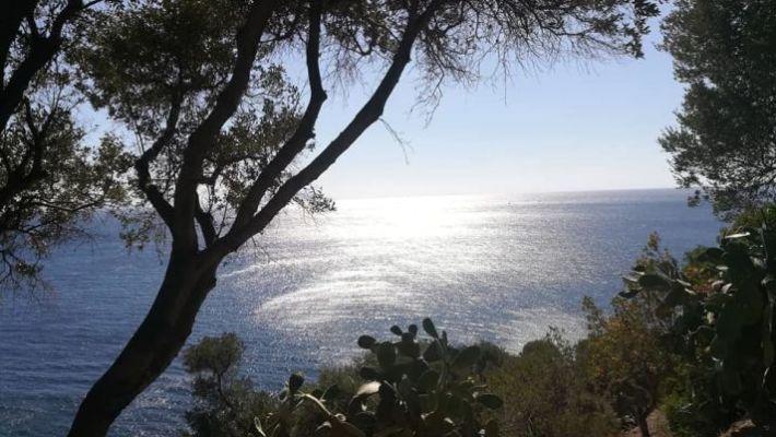 Veduta del mare su Ischia fai da te