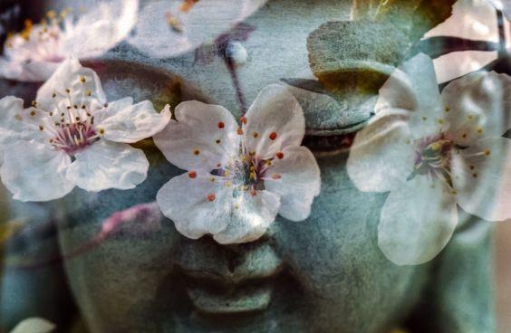 buddismo e spiriti nat
