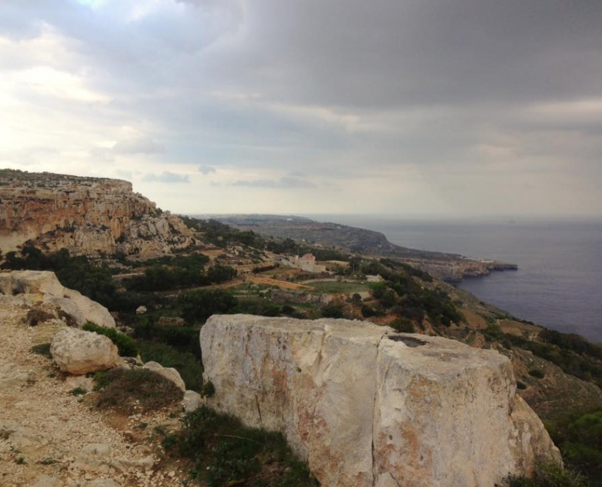 coste maltesi
