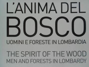 """""""L'anima del bosco. Uomini e foreste in Lombardia"""" - visita fotografica di Punto.Ponte-locandina"""