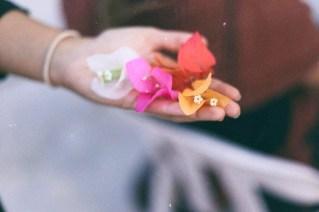 Bugambilia de todos los colores