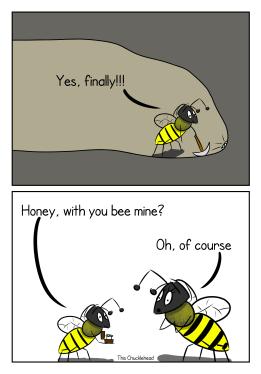 Beelive in true love