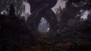 THE DEAD TREE OF RANCHIUNA + UPDATE 1.1.3