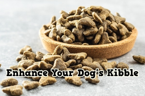 How To Enhance Your Dog's Kibble