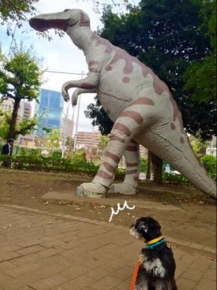 品川区の新馬場で恐竜に遭遇! 背後を気にするカポネくんをパチリ。
