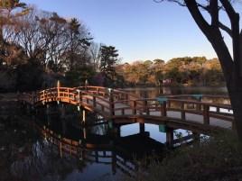 今日は寒かったですねーー! 寒いと思いつつ大田区の洗足池で電車を降りてしまいました。 いつも見ていて行きたいなと思っていたのですが行って良かった!満喫しました♪ブログ更新しました→https://puppybeans.tokyo/2015/02/10/osanpo-2/