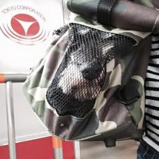 電車で移動中。興味津々でお外を観察しています。 このキャリーバッグはお顔がよく見えるので、いろいろな方から笑顔を頂きます(^ω^) 今日は台風が来ていますのでお気をつけ下さいね。