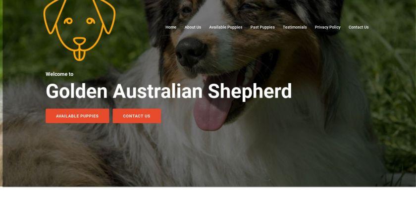 Goldenaustralianshepherd.com - Germanshepherd Puppy Scam Review