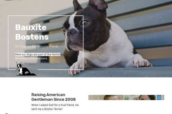Pawesomedoggycrew.com - Boston Terrier Puppy Scam Review