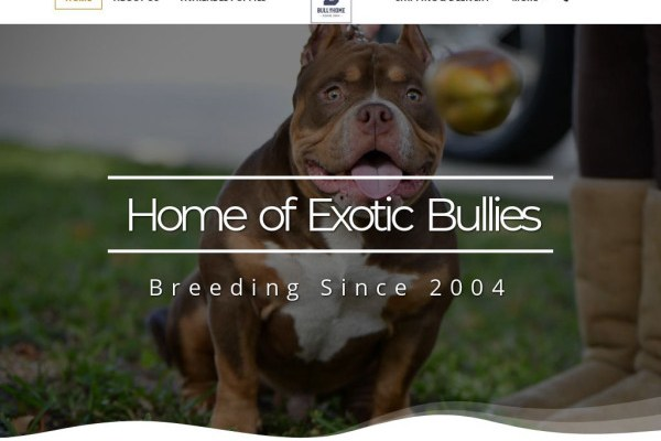 Homeofbully.com - Pit Bull Puppy Scam Review