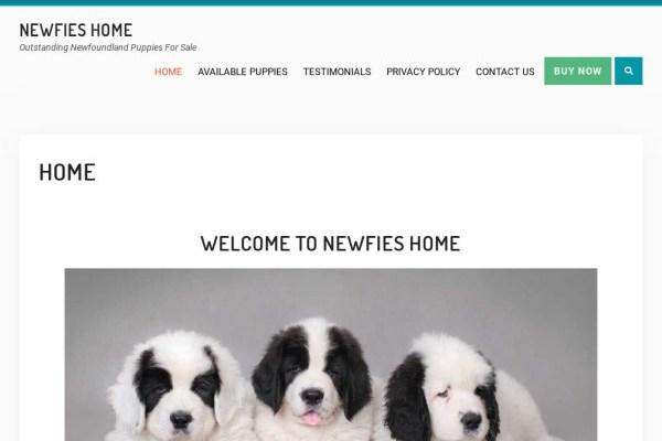 Newfiehome.com - Labrador Puppy Scam Review