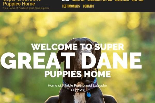 Supergreatdanepuppieshome.com - Great Dane Puppy Scam Review