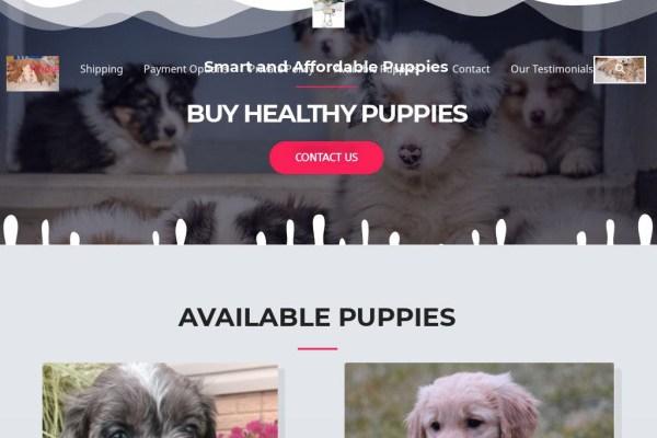 Cutefamilypups.com - Cavapoo Puppy Scam Review