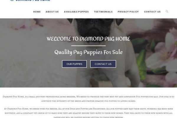 Diamondpughome.com - Pug Puppy Scam Review