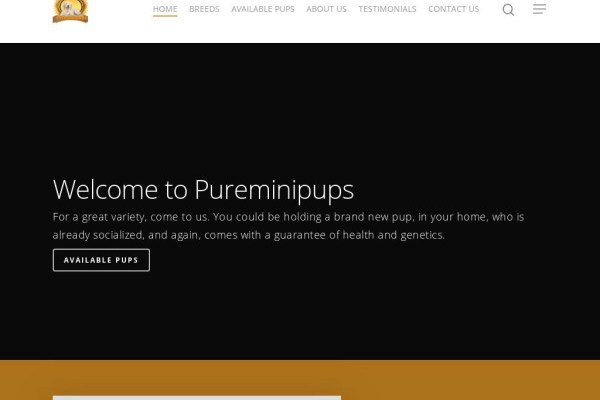 Pureminipups.com - Labradoodle Puppy Scam Review