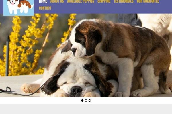 Applesaintbernards.com - Saint Bernard Puppy Scam Review