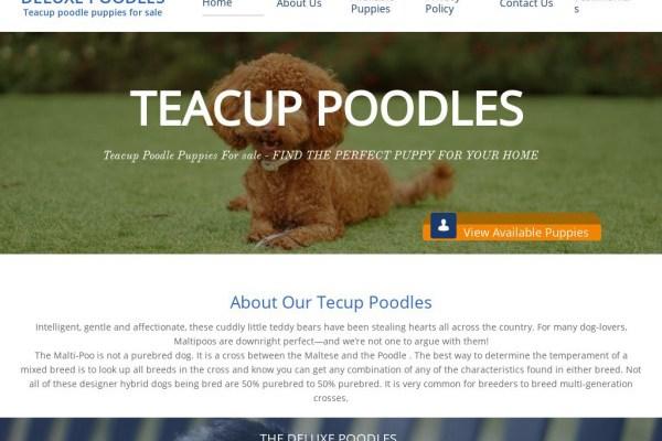 Deluxepoodles.com - Poodle Puppy Scam Review