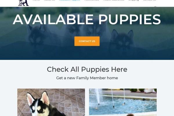 Skylinehuskyhome.com - Husky Puppy Scam Review
