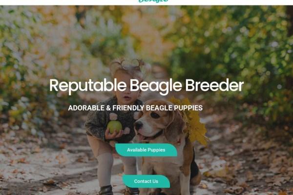 Classicbeagle.com - Beagle Puppy Scam Review