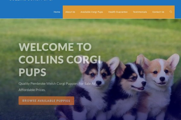 Collinscorgipups.com - Corgi Puppy Scam Review