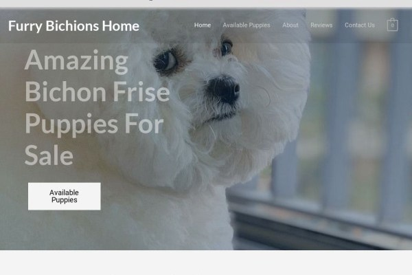 Furrybichionhome.com - Bichon Frise Puppy Scam Review