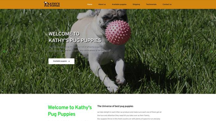 Kathyspugpuppies.com - Dachshund Puppy Scam Review