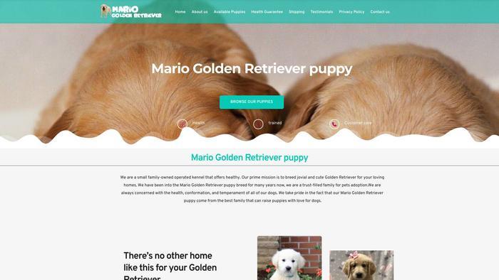 Mariogoldenretriever.com - Golden Retriever Puppy Scam Review