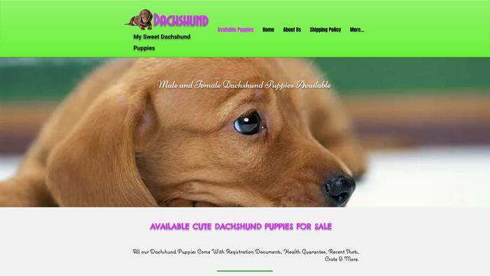 Mysweetdachshuandhome.com - Dachshund Puppy Scam Review