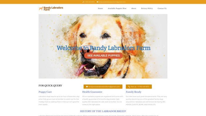 Randywoodslabradorsfarm.com - Labrador Puppy Scam Review