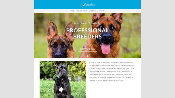 Activecanecorsopups.com - Cane Corso Puppy Scam Review