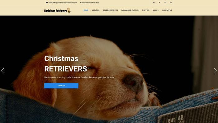 Christmasretrievershome.com - Golden Retriever Puppy Scam Review