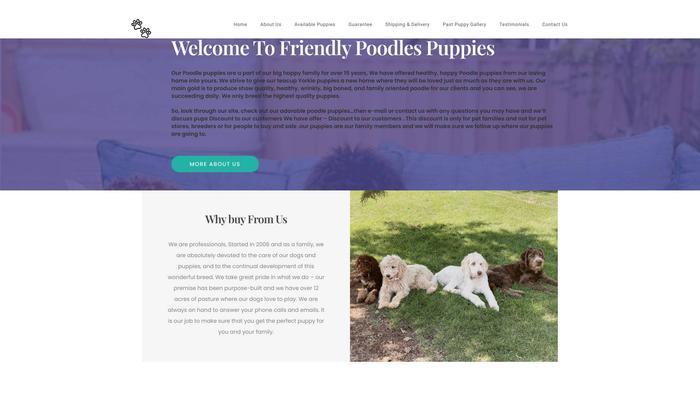 Friendlypoodlepups.com - Poodle Puppy Scam Review