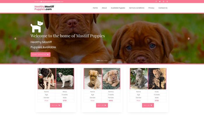 Healthymastiffpuppies.com - Tibetan Mastiff Puppy Scam Review