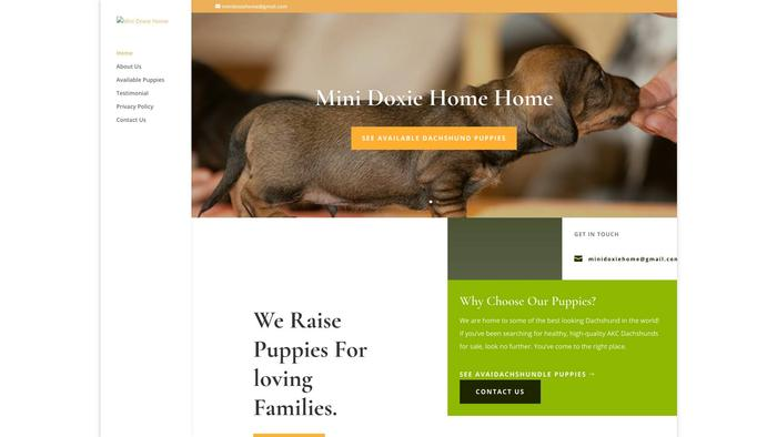 Minidoxiehome.com - Dachshund Puppy Scam Review