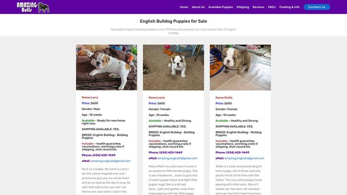 Amazingbulls.com - English Bulldog Puppy Scam Review