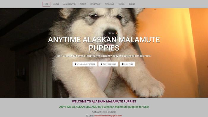 Anytimealaskanmalamute.com - Malamute Puppy Scam Review