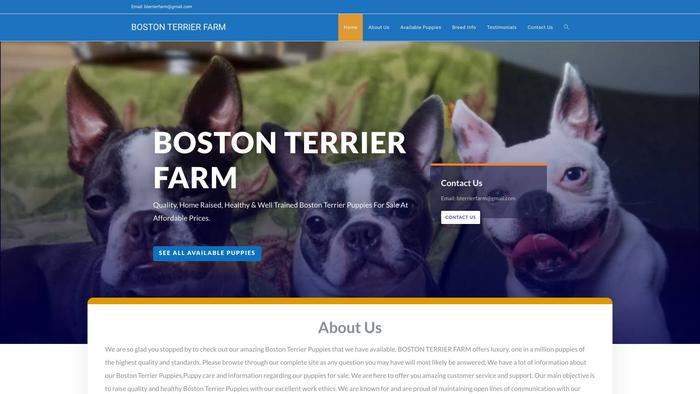 Bostonterrierfarm.com - Boston Terrier Puppy Scam Review
