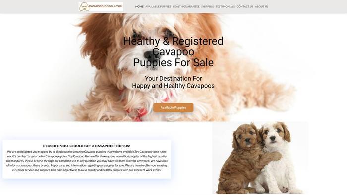 Cavapoodogs4you.com - Cavapoo Puppy Scam Review