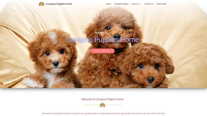 Cavapoopuppies.xyz - Cavapoo Puppy Scam Review
