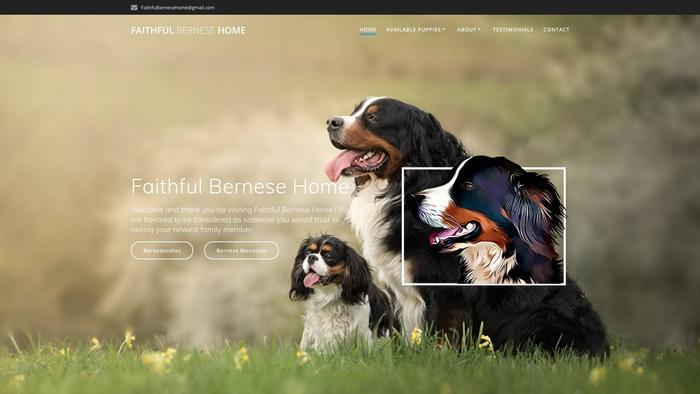 Faithfulbernesehome.com - Bernese Mountain Dog Puppy Scam Review