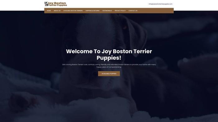Joybostonterrierpuppies.com - Boston Terrier Puppy Scam Review