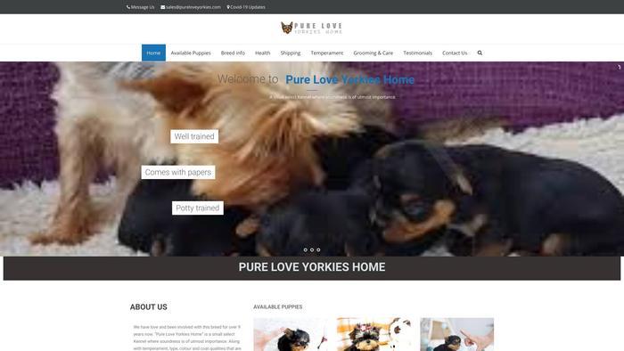 Pureloveyorkies.com - Yorkshire Terrier Puppy Scam Review