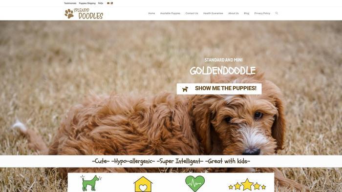 Splendiddoodles.com - Labradoodle Puppy Scam Review