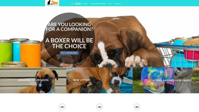 Trainedboxerpuppies.com - Boxer Puppy Scam Review